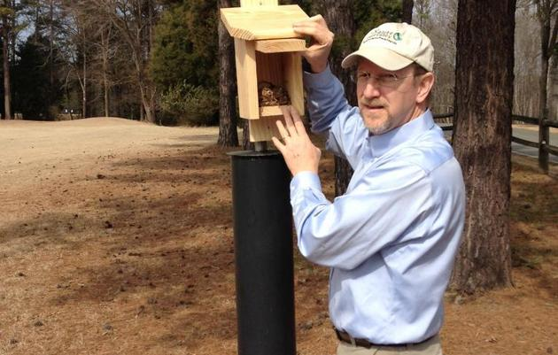 Installing Nuthatch Nest Boxes 101