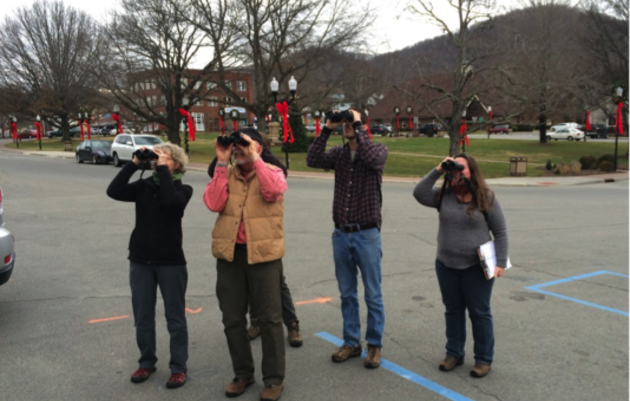Christmas Bird Count Returns to Yancey County After 60 Years