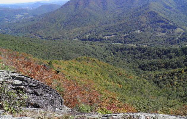Amphibolite Mountains IBA