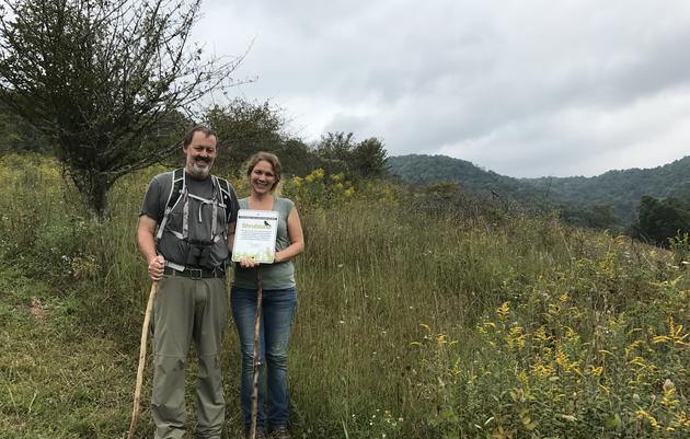 Restoring 200 Acres for Golden-winged Warblers
