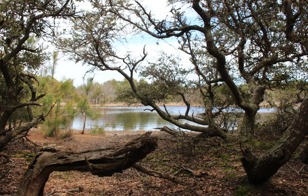 NC Forever: A Partnership to Conserve North Carolina's Lands and Waters