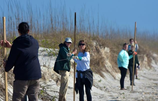 Posting Sites for the 2017 Coastal Nesting Season