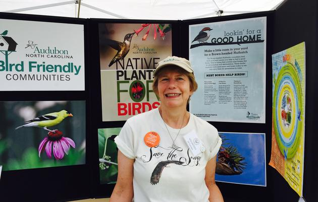 A Year of Action for Birds & Climate