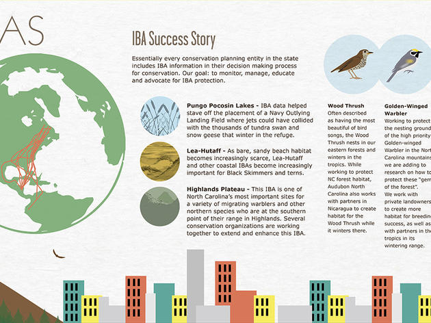 See the Local and Global Impacts of our NC IBAs