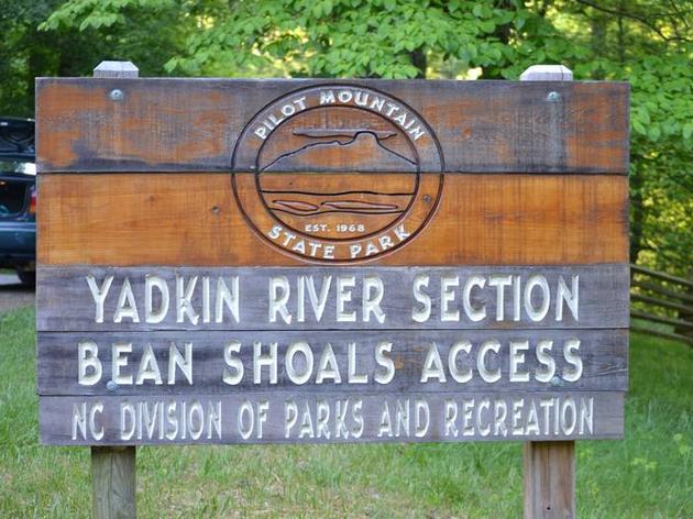 Studying Migrating Wood Thrush in North Carolina
