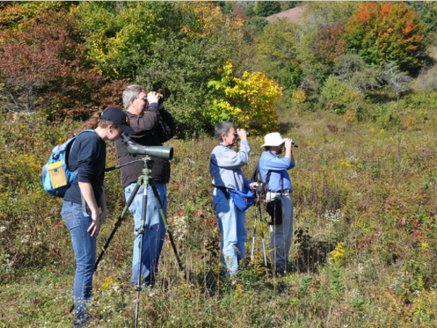 """113th Annual Christmas Bird Count to """"Drop Fees, Add Languages, Go Digital"""""""