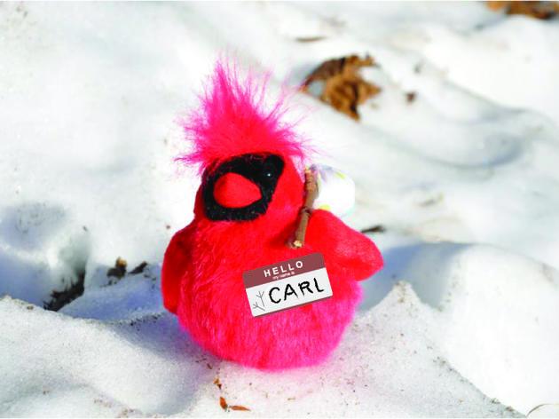 Where's Carl? 2013 Edition!