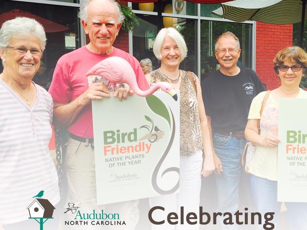 Celebrating Three Years of Bird-Friendly Communities