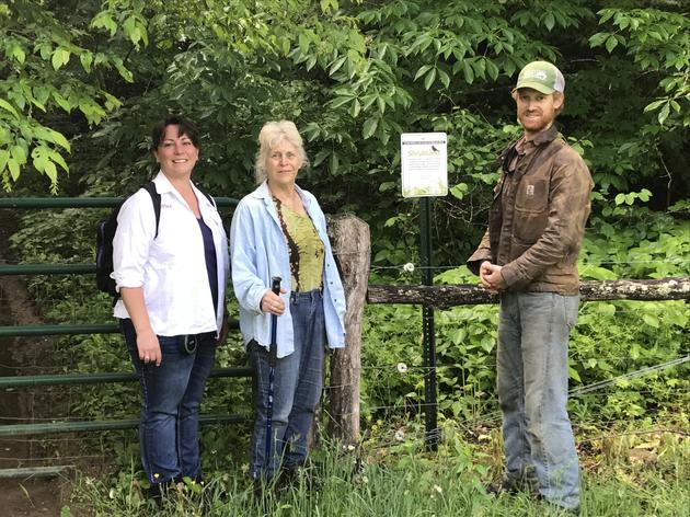 Local Farmers Use Horses to Restore GWWA Habitat