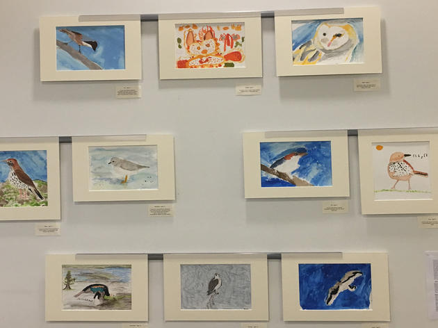 Host an Art Party for Bird Conservation in 8 Easy Steps