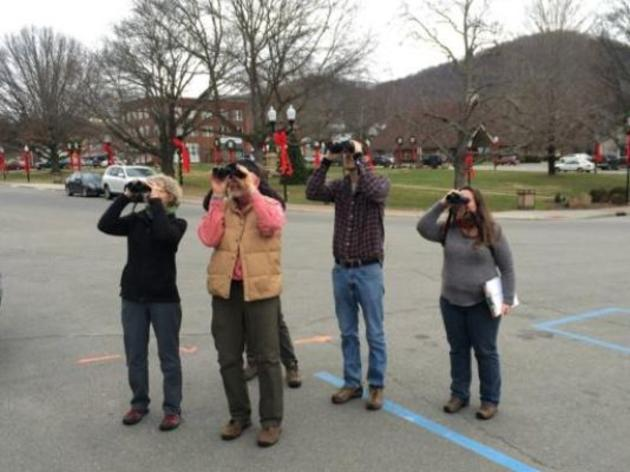 Black Mountain News: Audubon Christmas Bird Count underway for the 116th time