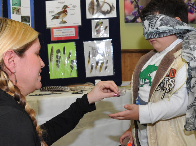 Local Students Discover the Wonders of Birds
