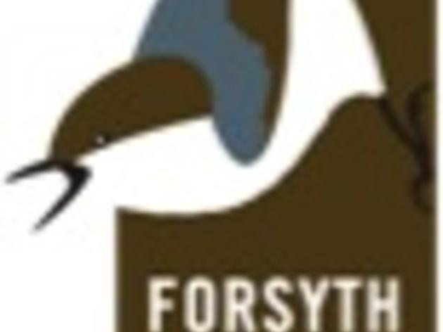 Chapter of the Month: Audubon Society of Forsyth County