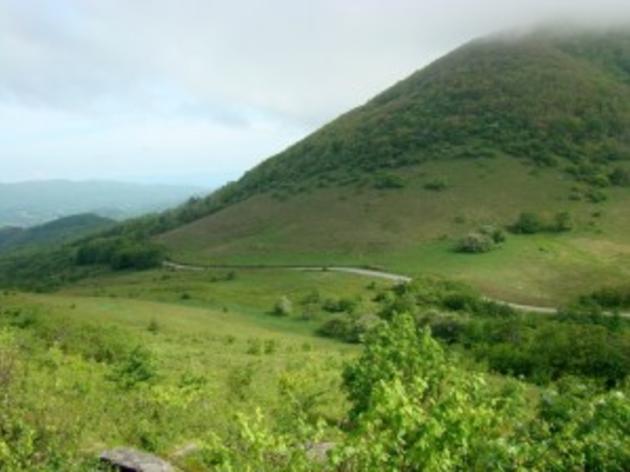 Mountain Region IBAs