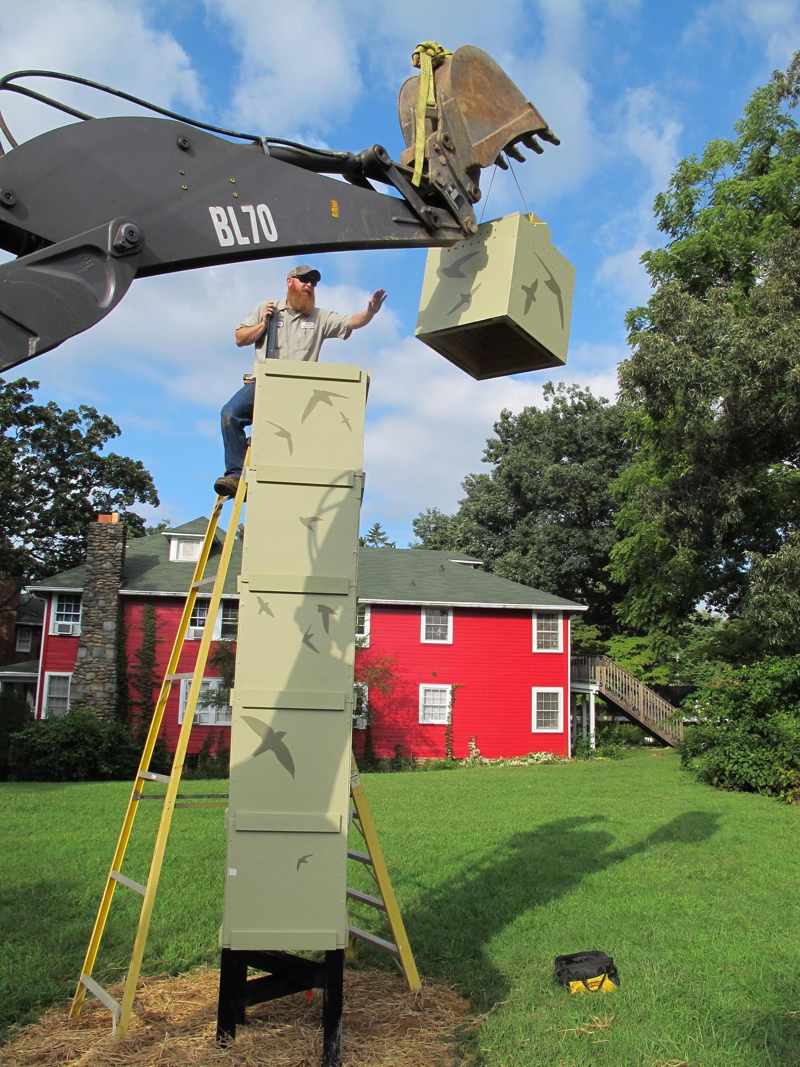Build Your Own Chimney Swift Tower | Audubon North Carolina