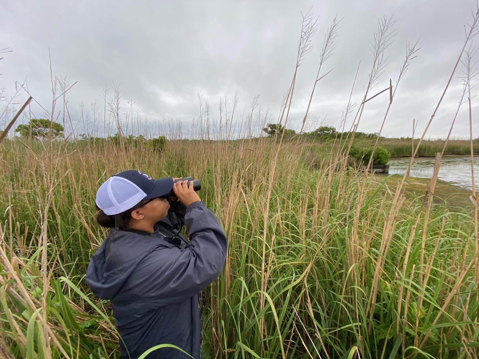 While secretive marsh birds are hard to see, we do try to spot them.