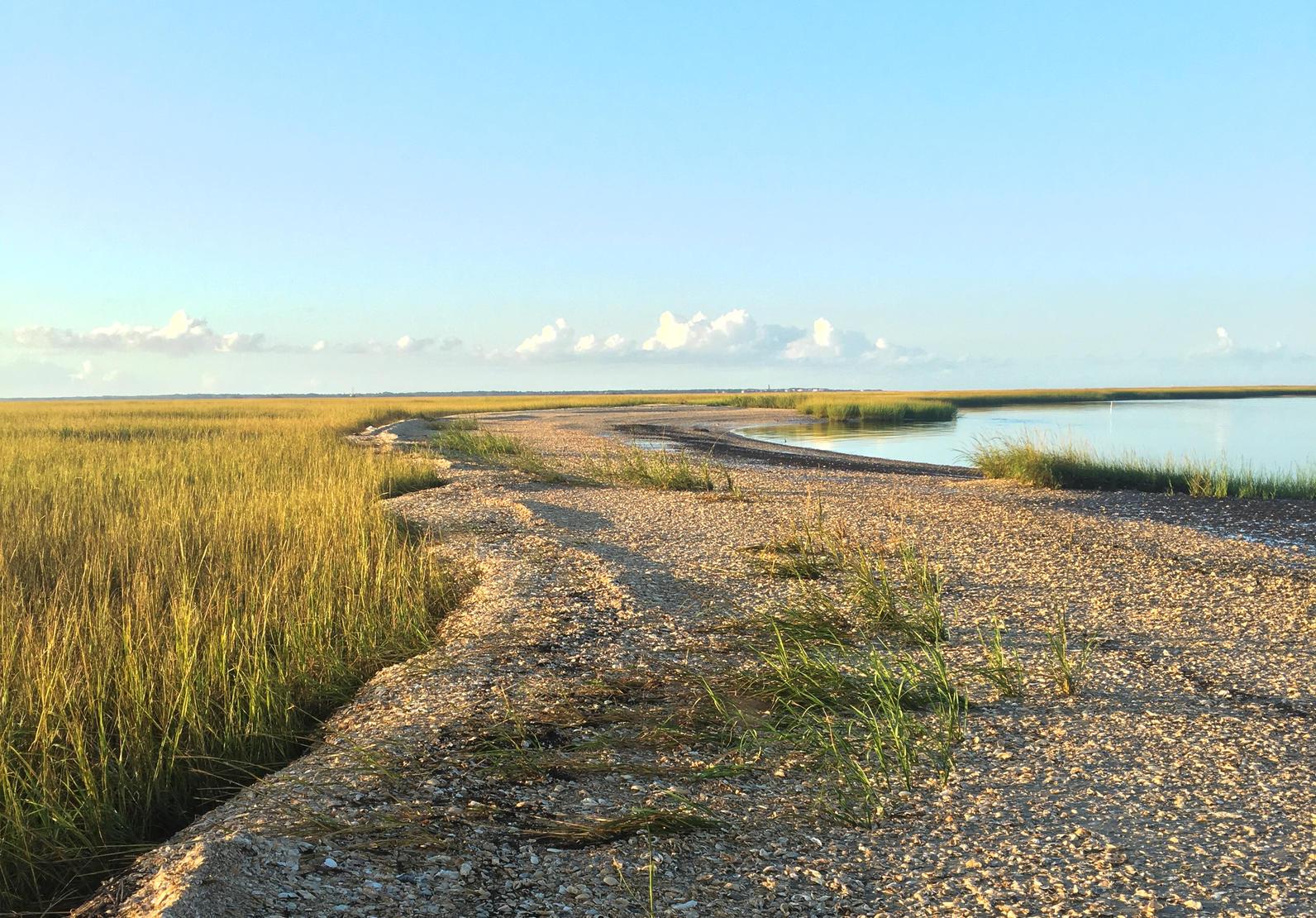 Smith Island photo